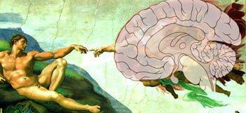 Capsule outil : Expérience mystique et méditation : les corrélats neurobiologiques