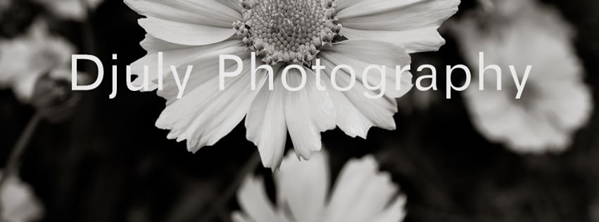 Djuly Photography