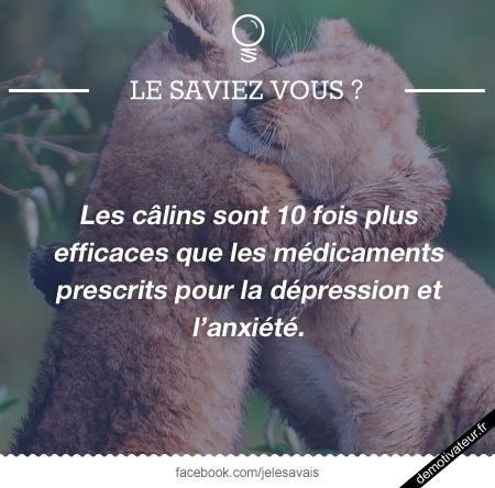 Demotivateur.fr | Les câlins
