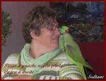 le blog d'une dame passionnée comme moi qui a repris un couple de grand alexandre chez moi.