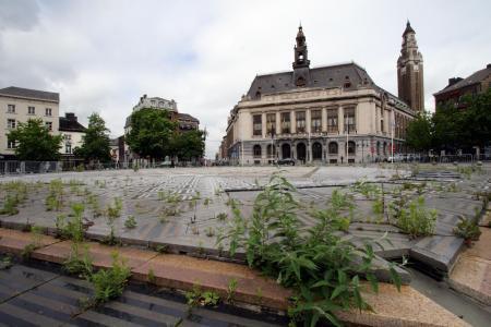 Charleroi: ce n'est plus la jungle devant l'Hôtel de Ville, la place Charles II a été nettoyée
