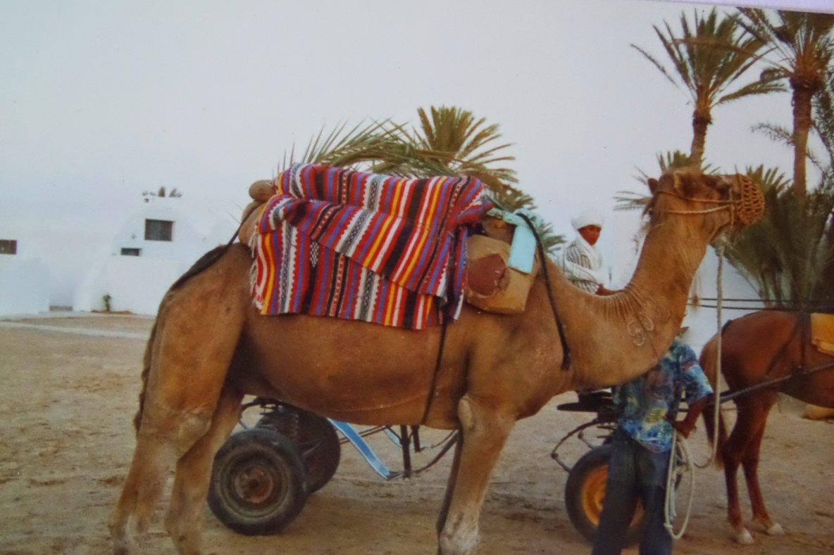 Voyage et travail missionnaire en Afrique et en Haïti voilà mon histoire