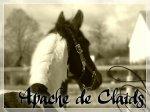 Blog de Apache-de-claids