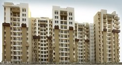 Resale Flats / Apartments in Central Noida