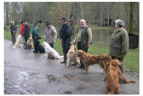 Retriever Training Club de Beauraing