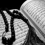 موقع نصرة محمد رسول الله