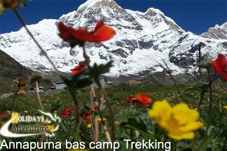 Annapurna base camp trekking, Annapurna Region Trek | Trekking in Nepal, Holidays adventure in Nepal, Trekking and tour operator agency in Nepal