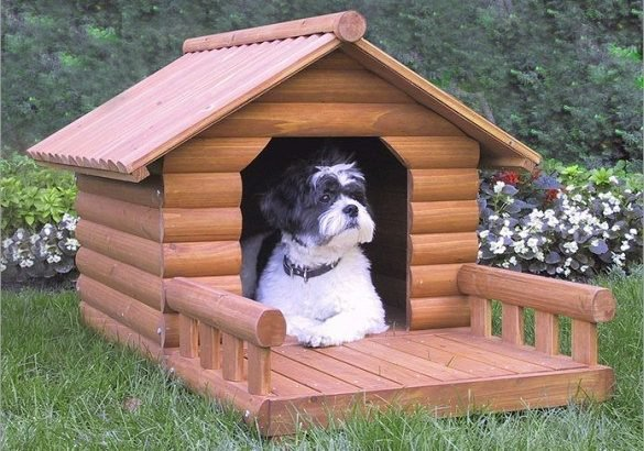 How To Make a Dog House - LivingBetter