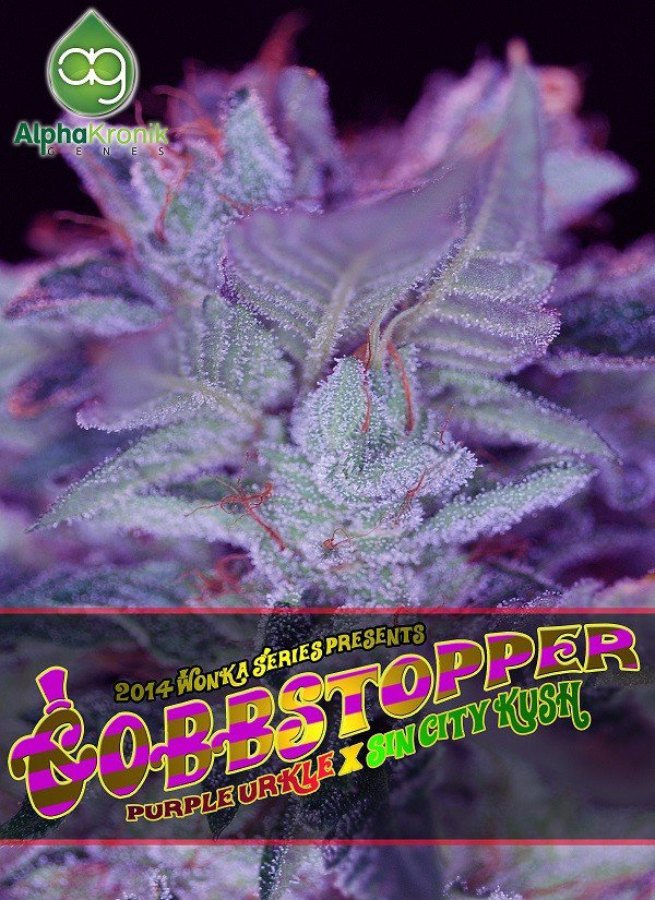 Gobbstopper Regular Seeds