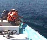 Une baleine dans un filet de pêche