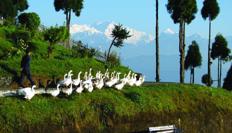 Kanchenjunga Trekking, Kanchenjunga Base Camp Trek, National Park