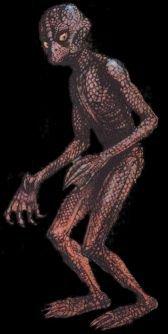 Onnouscachetout.com - Dossier sur les Extraterrestres Reptiliens