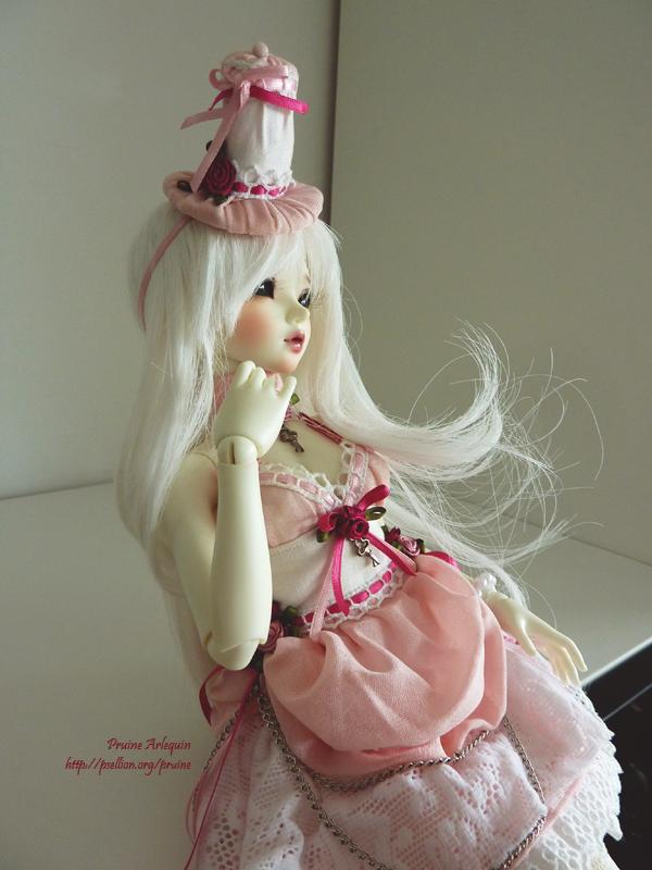 Pruine Arlequin | L'univers des Dolls !