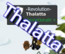 Team Thalatta sur Brumaire.