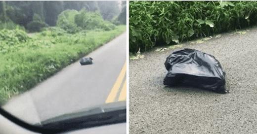 En voyant ce sac bouger au bord de la route, elle s'est immédiatement arrêtée !