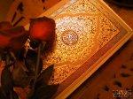 le blog de AllahLeToutPuissan