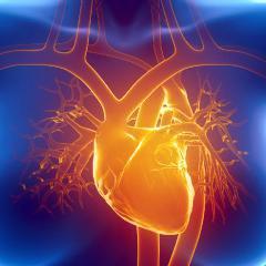 Les crises cardiaques plus meurtrières chez les femmes: plusieurs raisons