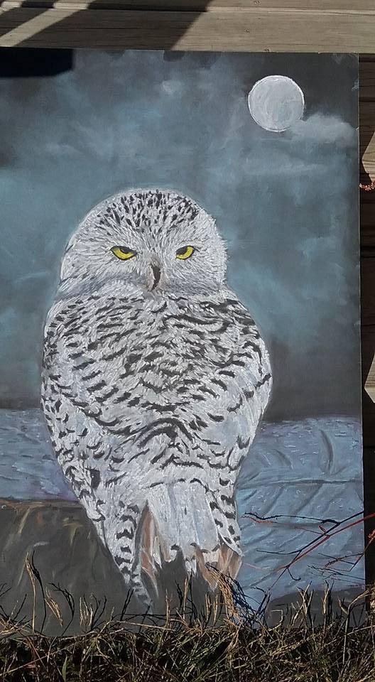 Pastel Owl – Artwork for Sale