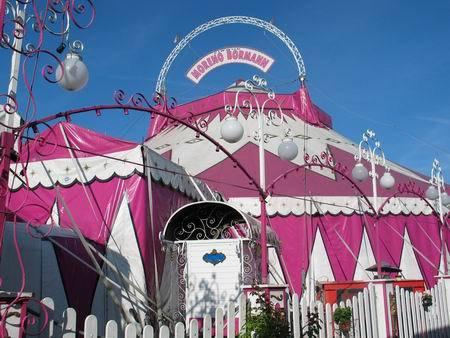 cirque-diana-moreno.com