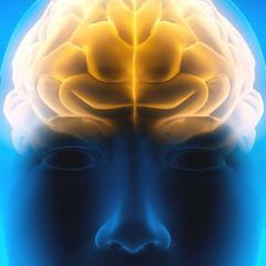 Dégénérescence fronto-temporale et SLA: des marqueurs plusieurs années avant les symptômes