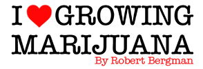 How To Grow Marijuana - I Love Growing Marijuana