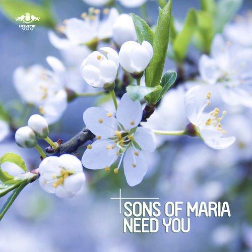 Need You (Radio Mix)