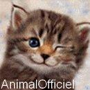 le blog de AnimalOfficiel