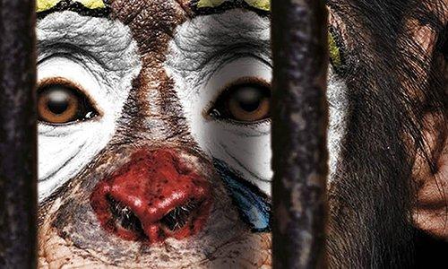 Pétition : Les Ulis : Ne plus jamais accueillir de cirques avec animaux