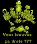 le musee du web :: Grenouille
