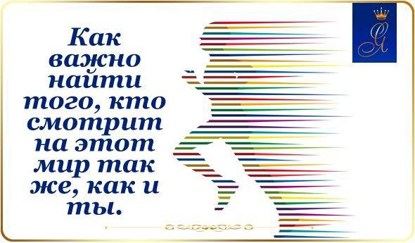 Цитаты / quote