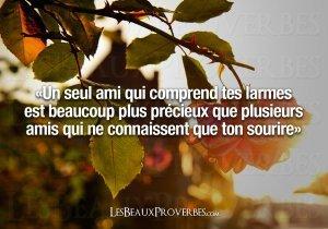 l'amitié !!! - posté par webmaster sur Sercomxat