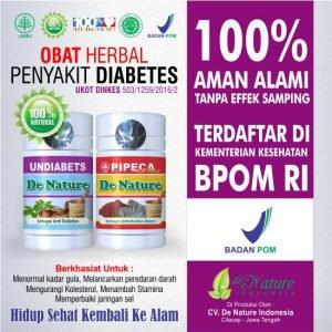 Terapi dan pengobatan penyakit dibetes | Obat Diabetes