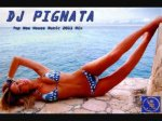 DJ Pignata - Top New House Music 2011 Mix [Summer Hits & Clubbing Dancefloor Party]