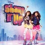 le blog de shake-it-up-chicago