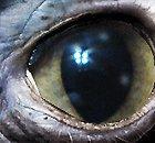 Aliens : grand déballage d'un ancien ministre - Paranormal
