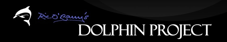 Home   Ric O'Barry's Dolphin Project