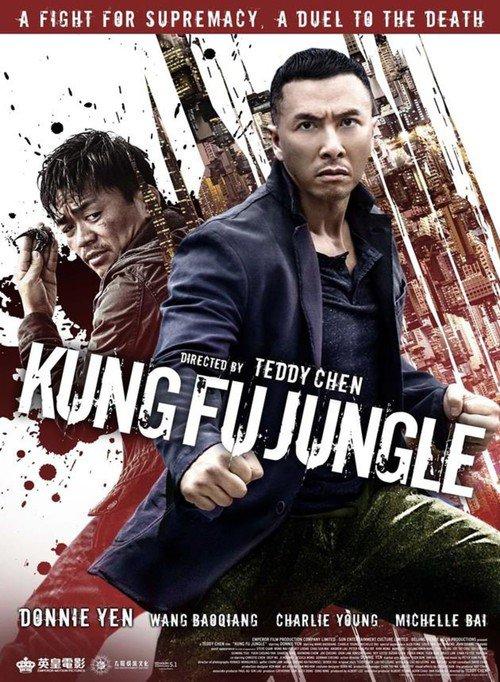 "Bonsoir a l'honneur : "" Kung Fu Jungle """