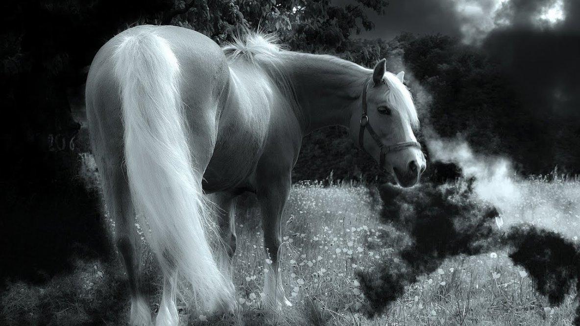 Goldfrapp - Ride A White Horse  (Serge Santiago Remix)