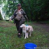 - retrieverhond..eigenstart.nl 0