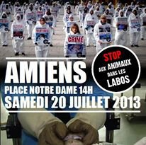 Happening against animal testing in Amiens July 20, 2013!