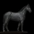 La fiche du cavalier Loubdt - Equideow Ouranos