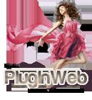 le blog de pluginweb