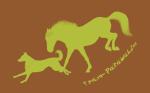 le blog de Team-Patawak