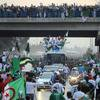 و الله يا ناس الجزائر....؟