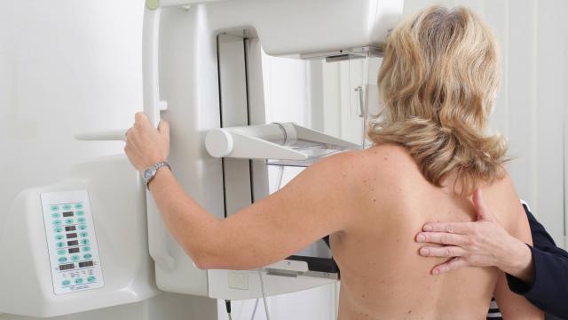 Cancer du sein. Une molécule offre une nouvelle piste de traitement