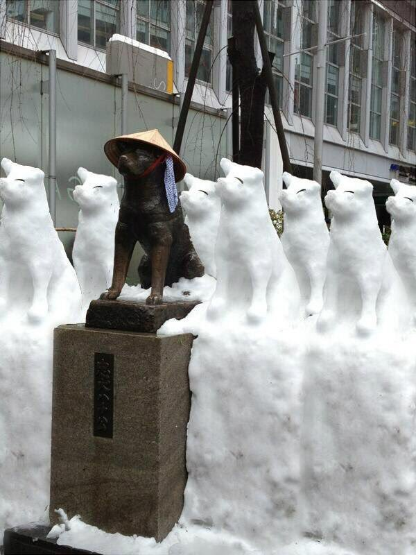 http://www.niceplacevisit.com/really-easy-hachiko-statue-japan/