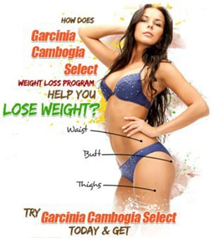 Garcinia Cambogia Select Diets - Supplements