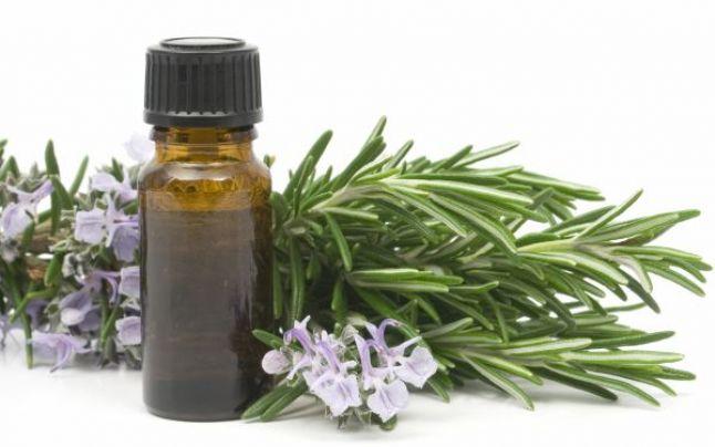 teintures à base de plantes-tinctura din plante medicinale