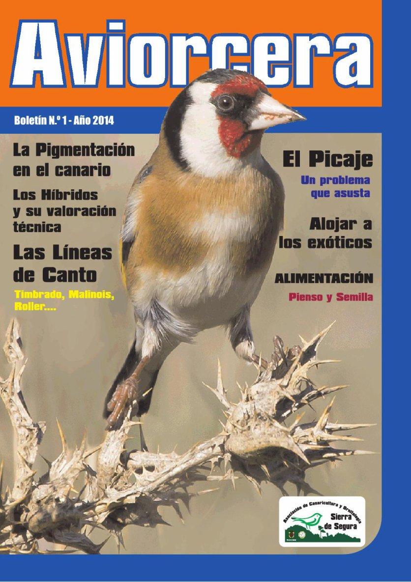 AVIORCERA nº 1. Publicación ornitológica online