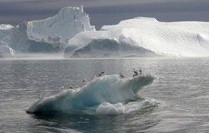Des scientifiques s'alarment de l'acidification rapide de l'océan Arctique